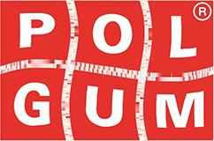 Original POLGUM Passgenaue Fußmatten AUDI