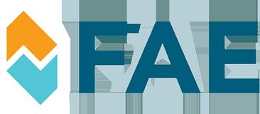 Original FAE Sensor Ansauglufttemperatur TOYOTA