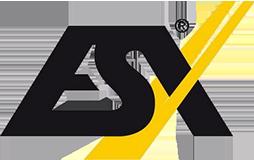 ESX Haut-parleurs voiture