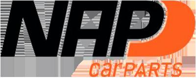 OEM Katalysator 1J0131089AX von NAP CleanAIR