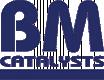 BM CATALYSTS Auspuffrohre FORD