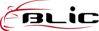 BLIC Поставка за регистрационен номер лъскави / матови / сребристи
