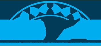 BTA Spannrolle für MERCEDES-BENZ AROCS