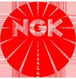 Original NGK Glühkerzen JEEP