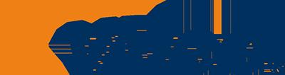 RENAULT Stoßdämpfer von VAICO Hersteller