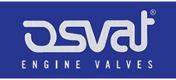 Einlaßventil von OSVAT Hersteller für AUDI A4