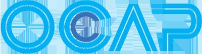OEM Traggelenk C12803 von OCAP