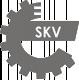 Оригинални ESEN SKV Щанга за независимо окачване на колело (надл, напр.кос носач