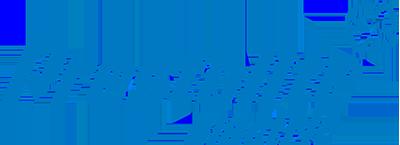 OEM Generatorregler, Fensterheber 1126597 von PRESTOLITE ELECTRIC