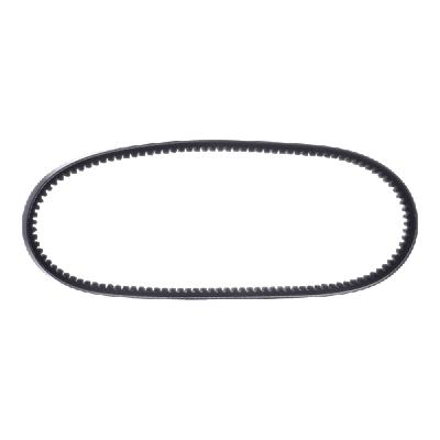Order SPA 2000 OPTIBELT V-Belt now