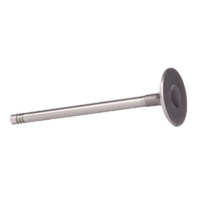 BGA: Original Einlaßventil V026024 ()