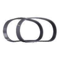 Keilrippenriemensatz SKRBS-1200019 — aktuelle Top OE 1175000Q0C Ersatzteile-Angebote