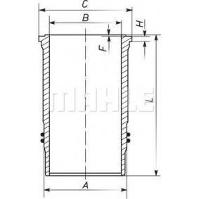 LKW Zylinderlaufbuchse