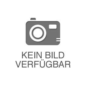 Bremshebel, Fußrastenanlage