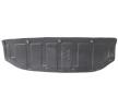 BLIC Motor- / Unterfahrschutz 6601-02-1617880P