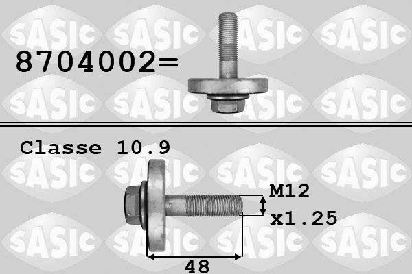 SASIC: Original Riemenscheibenschraube 8704002 ()