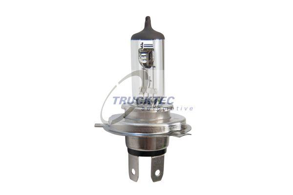 TRUCKTEC AUTOMOTIVE Glühlampe, Hauptscheinwerfer für AVIA - Artikelnummer: 88.58.103