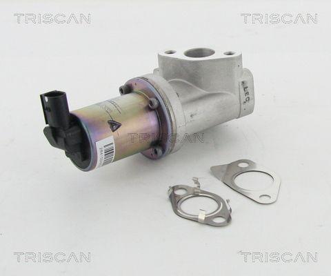 AGR Ventil TRISCAN 8813 43021