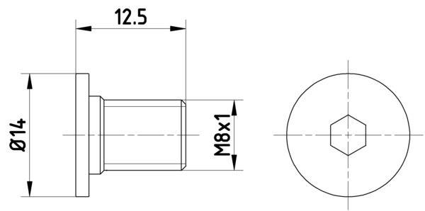 HELLA: Original Schraube, Bremsscheibe 8DZ 355 209-021 ()