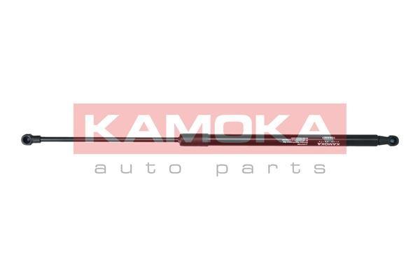 999048 Testina dello Sterzo KAMOKA 999048 - Prezzo ridotto
