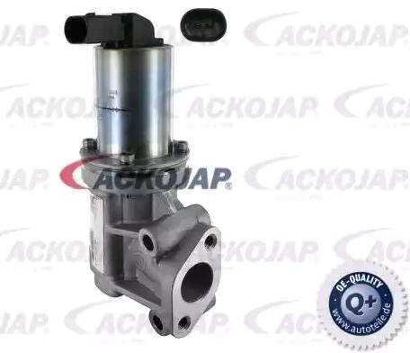 Original NISSAN AGR Ventil A52-63-0006