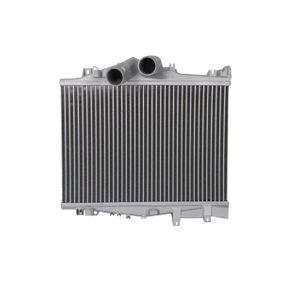 Ladeluftkühler THERMOTEC DAME006TT mit % Rabatt kaufen