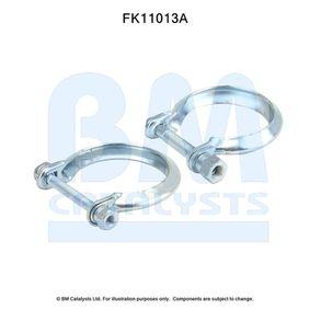 FK11013 BM CATALYSTS Montagesatz, Ruß- / Partikelfilter FK11013 günstig kaufen