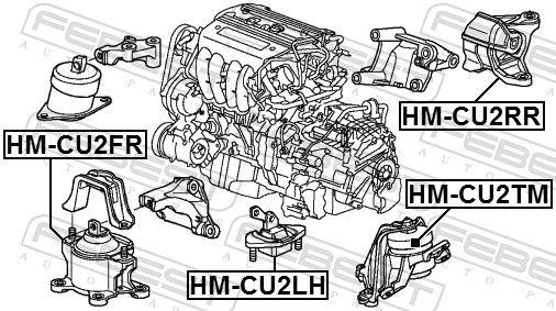 FEBEST | Lagerung, Automatikgetriebe HM-CU2TM