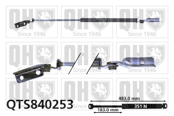 Mercedes 124-Series 1986 Boot gas struts QUINTON HAZELL QTS840253: Eject Force: 351N
