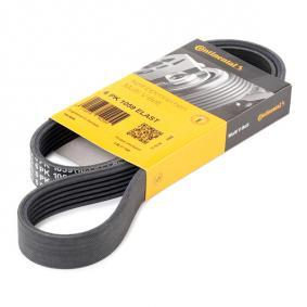 Contitech Continental 4PK592/V-belt with Ribs
