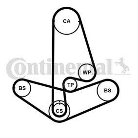 CT1045WP1 Wasserpumpe + Zahnriemensatz CONTITECH - Markenprodukte billig