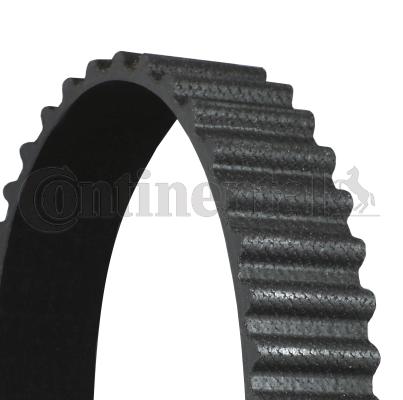 CONTITECH: Original Zahnriemen CT774 (Breite: 25mm)