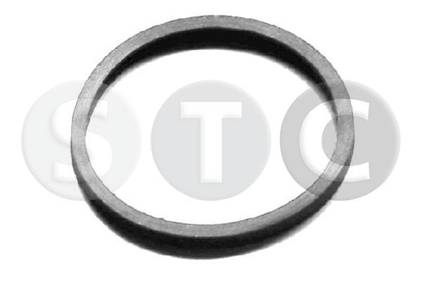 STC: Original Dichtung Thermostat T402404 ()