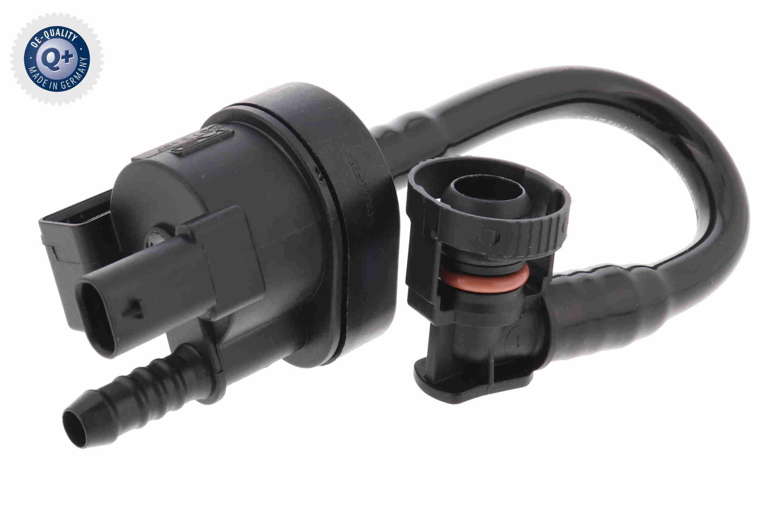OE Original Agr V10-4647 VAICO