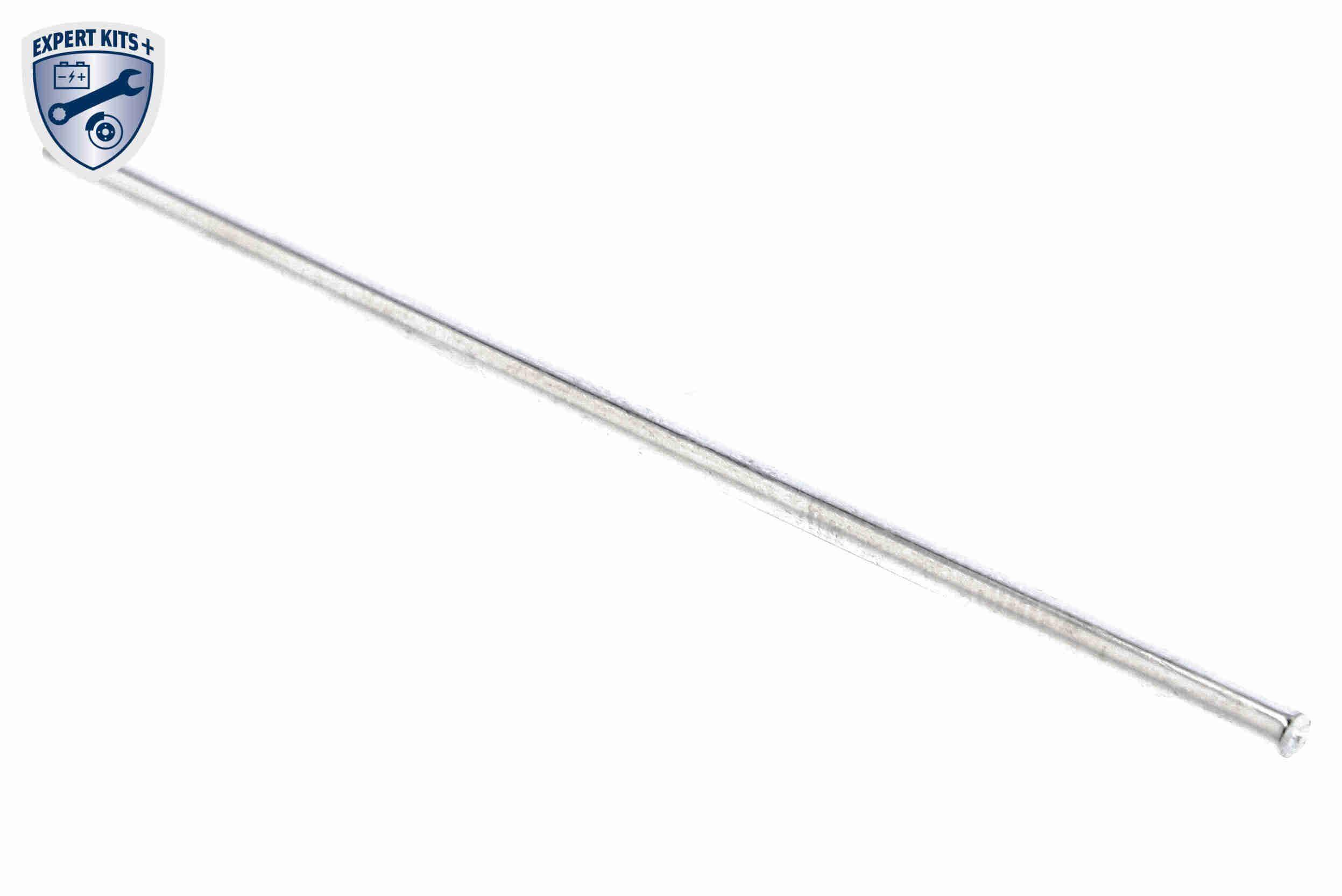 OE Original Agr V10-63-0053-1 VEMO