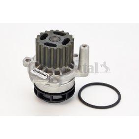 V65434 CONTITECH mit Dichtung Wasserpumpe WP6047 günstig kaufen