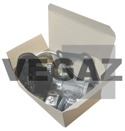 OE Original Montagesatz Katalysator SAA-11 VEGAZ