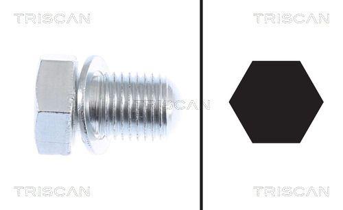 Ölablassschraube TRISCAN 9500 2903