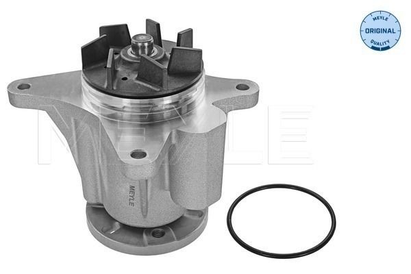 Original JAGUAR Wasserpumpe 53-13 220 0008
