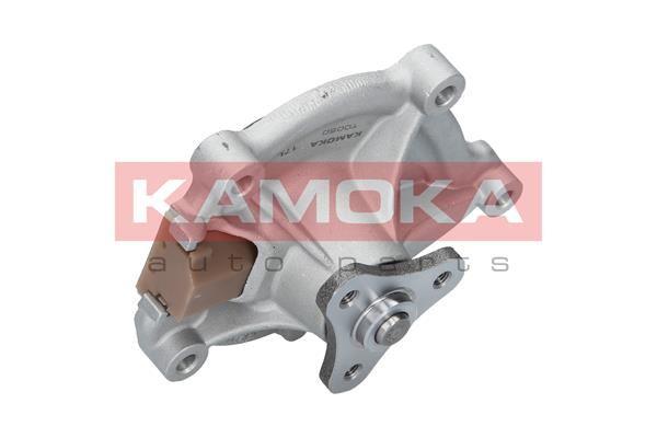 MINI COUNTRYMAN 2016 Wasserpumpe - Original KAMOKA T0050