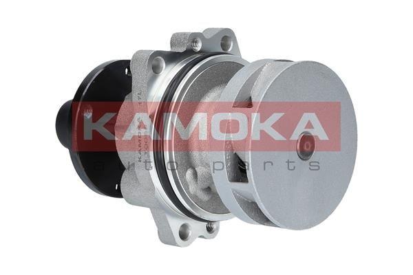T0058 KAMOKA für Keilrippenriementrieb Wasserpumpe T0058 günstig kaufen