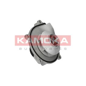 buy and replace Water Pump KAMOKA T0074