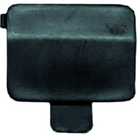 buy and replace Flap, tow hook DIEDERICHS ZUB00021