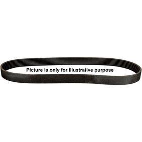 Pasek klinowy wielorowkowy JP GROUP 1518104100 kupić i wymienić