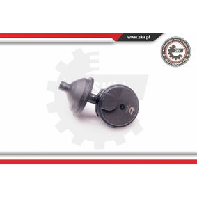 31SKV025 ESEN SKV Entlüftungsventil, motorseitig druckgesteuert Ventil, Kurbelgehäuseentlüftung 31SKV025 günstig kaufen