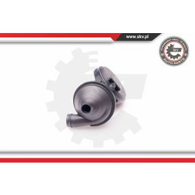 31SKV025 Ventil, Kurbelgehäuseentlüftung ESEN SKV 31SKV025 - Große Auswahl - stark reduziert