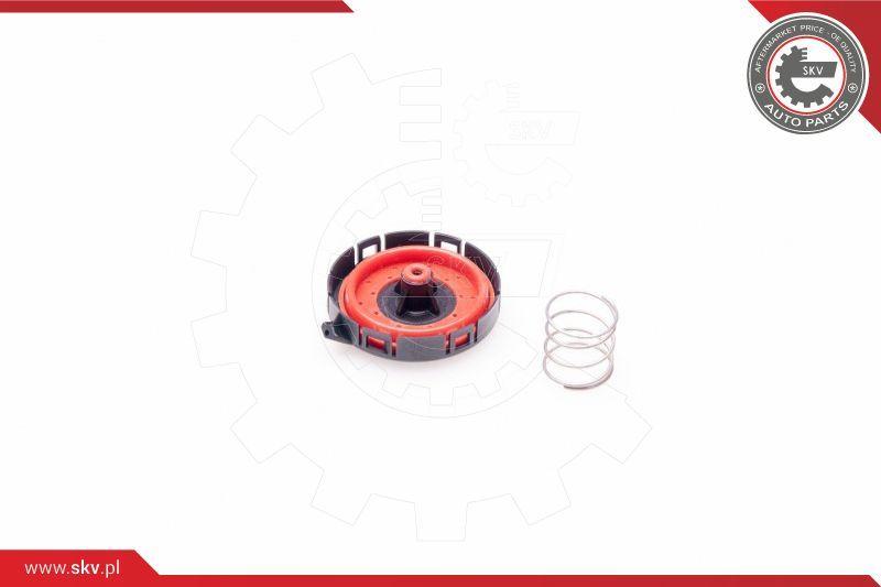 Ventil Kurbelgehäuseentlüftung ESEN SKV 31SKV032