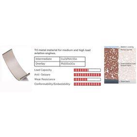 buy and replace Crankshaft Bearing Set IPSA MB109500