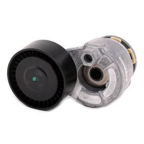 VKM 36055 Spannrolle, Keilrippenriemen SKF in Original Qualität