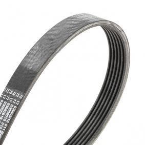 VKMA 31127 Komplet rebrastega jermena SKF - Znižane cene
